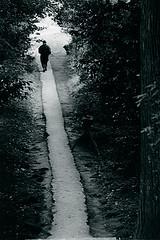 (18) Straight Paths