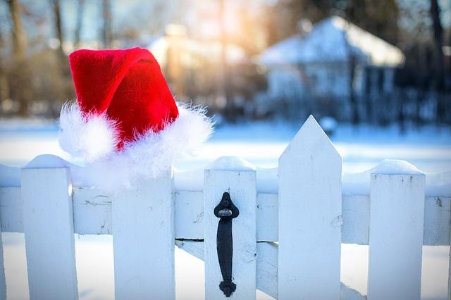 winter hat: christmas