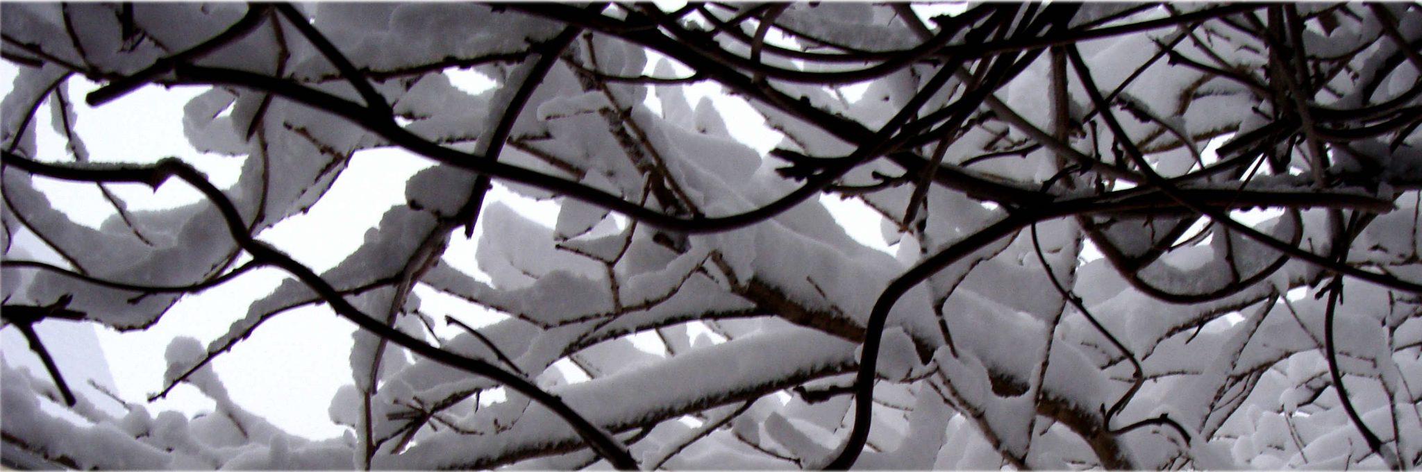 blanket of snowfall
