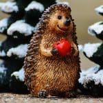 hedgehog apple